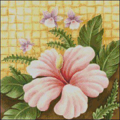 Розовый гибискус - А