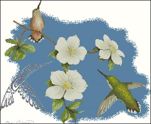Dogwood and Hummingbird by Sue Coleman вышивка схема крестиком скачать