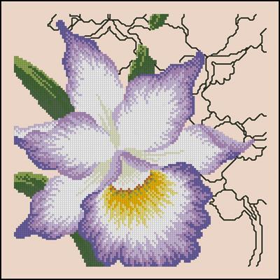 Exotic Orchid схема вышивки крестиком