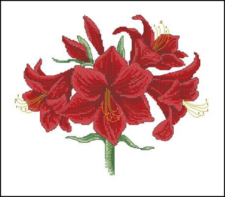 Красная лилия схема вышивка