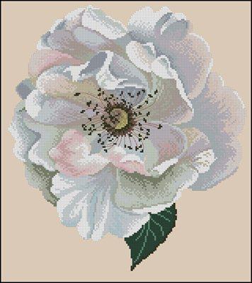 Vine Rose вышивка крестом схема