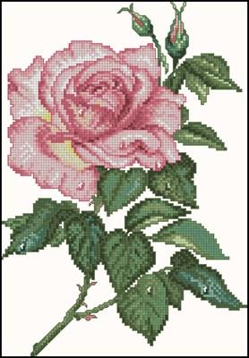 Radiant Rose схема вышивки крестом скачать бесплатно