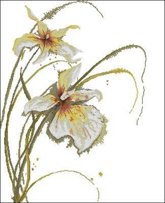 Орхидея схема вышивки крестом скачать схему