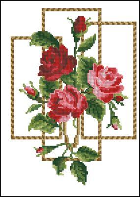 Розы в рамочках