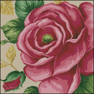 Rose Pink вышивка крестом