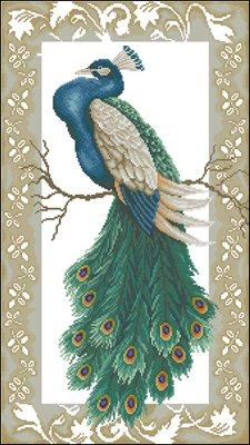 Peacock cross stitch схема крестом скачать бесплатно