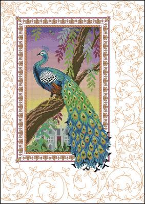 Renaissance peacock 80455 вышивка схема вышивки