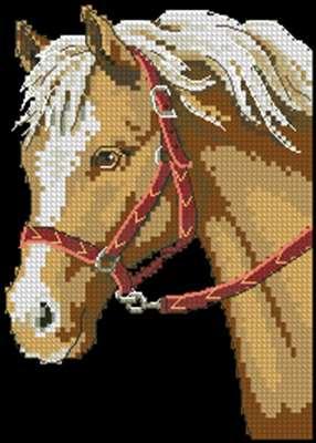 Favorite pony Dim 6974 схема вышивки крестом