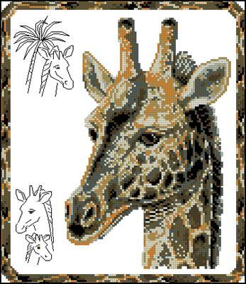 Жираф в рамочке