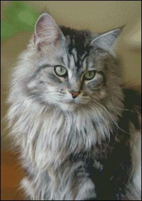 Благородная кошка вышивка