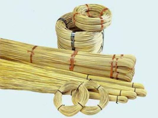Заготовка лозы для плетения